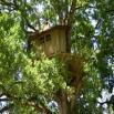 Cabanes dans les arbres en charente-maritime (dans le 17)